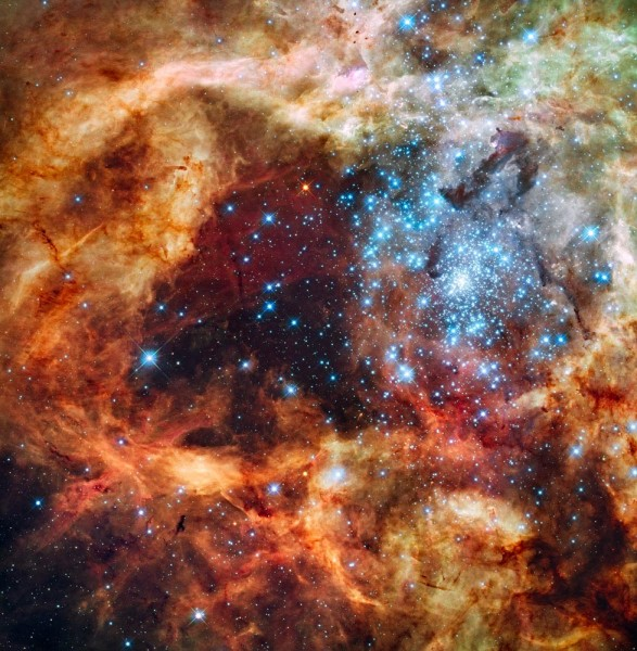 Jõulupostkaart Hubble'ilt: tähetekkepiirkond Suures Magalhaesi Pilves. Allikas: NASA, ESA, F. Paresce (INAF-IASF, Bologna, Italy), R. O'Connell (University of Virginia, Charlottesville), and the Wide Field Camera 3 Science Oversight Committee