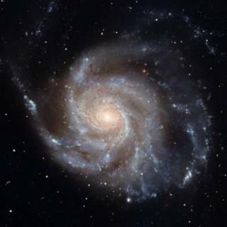 Galaktika M101.