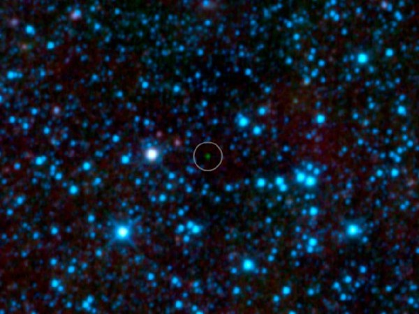 WISE 1828+2650, teadaolevatest külmim pruun kääbus