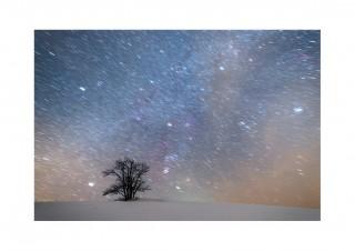 Klubifoto #6: Värviline talveöö