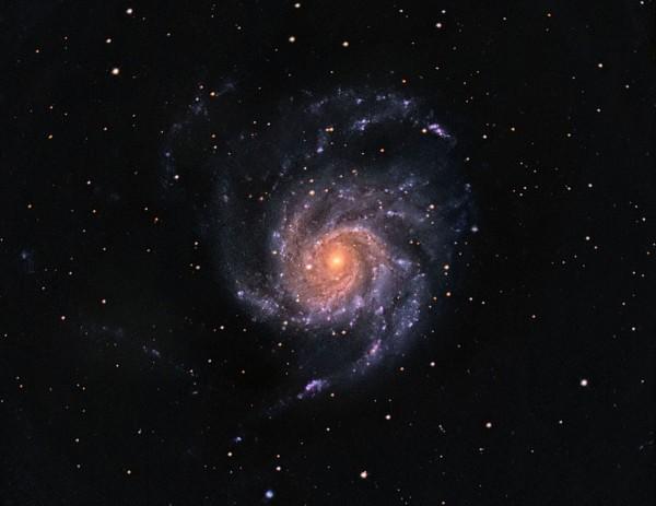 M101 ehk Tuuleratta galaktika Foto: Viljam Takis / Lüllemäe observatoorium (viljamtakis.com)