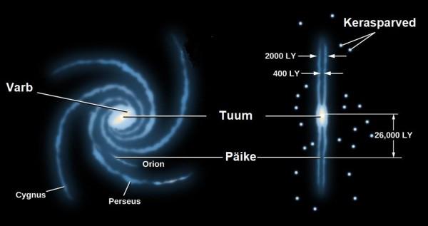 Lihtsustatud joonis Linnutee ehitusest ja meie Päikesesüsteemi asukohast selles. Parempoolses külgvaates on näha kerasparvede jaotust galaktikatasandi suhtes.