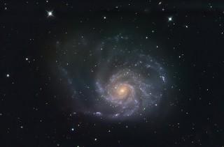 Tuuleratta galaktika ehk M101 asub Suures Vankris ja on oma grupis üks suurimaid. Foto: Raivo Hein